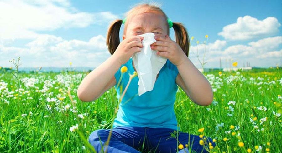 Несколько вопросов аллергологу